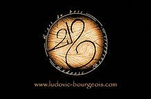 Logo Ludovic Bourgeois.jpg