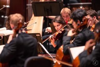 New Violin Teacher - Rachel Scuka