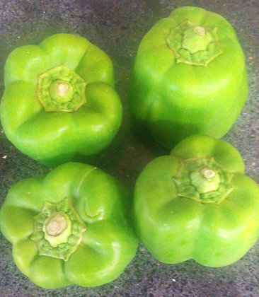 Pimiento morrón verde/ Bell pepper 16oz