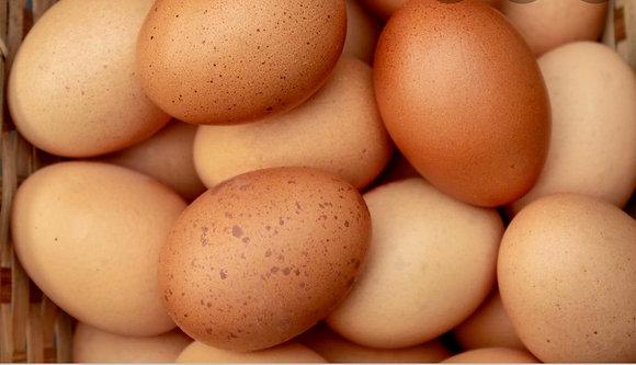 Huevos del pais Estancia Santa Rita 1Doz.