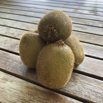 Kiwi 16 oz (aprox. 5)