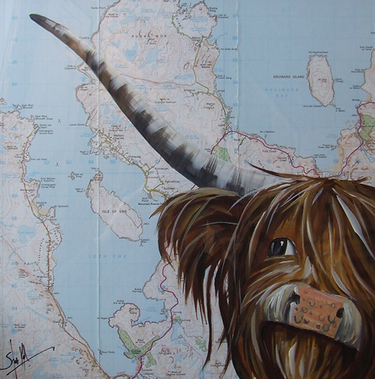 Gruinard Highlander