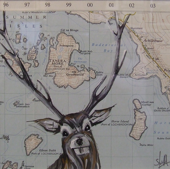 Summer Isles Stag
