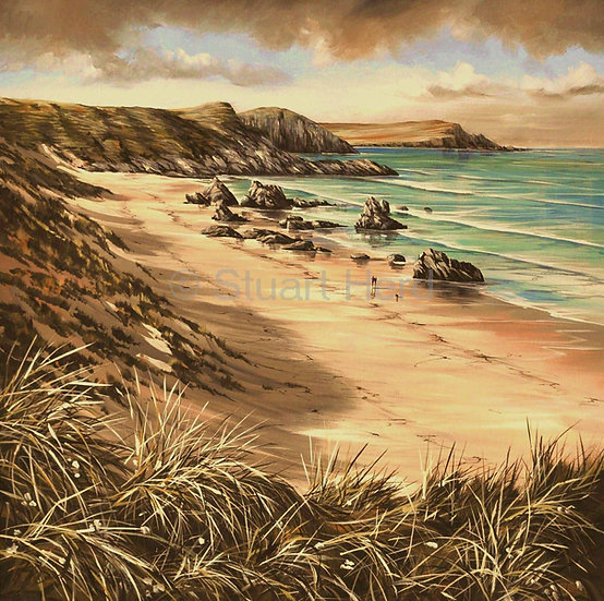Sango Bay Dune Grass