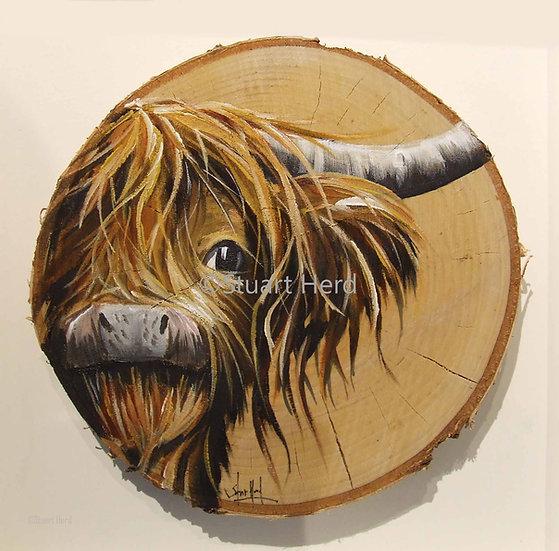 Highland Beech Slice 'Wee Robbie'