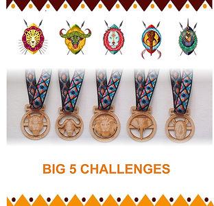 Big 5 Challenges