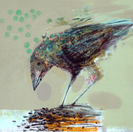 BIRD STUDY TWO