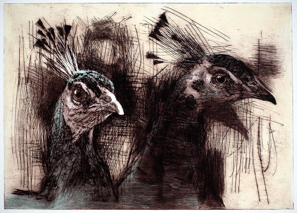 Two Peacocks by Tom Wood.jpg