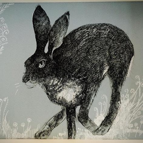 Follow the Hare