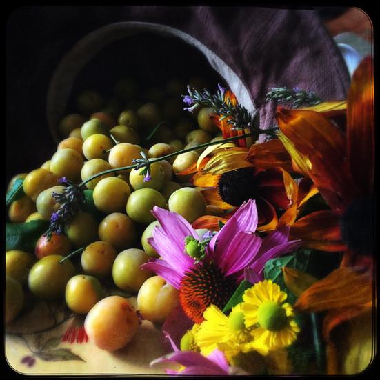 Harvest.