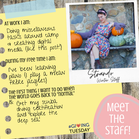 Meet the Staff Instagram Campaign