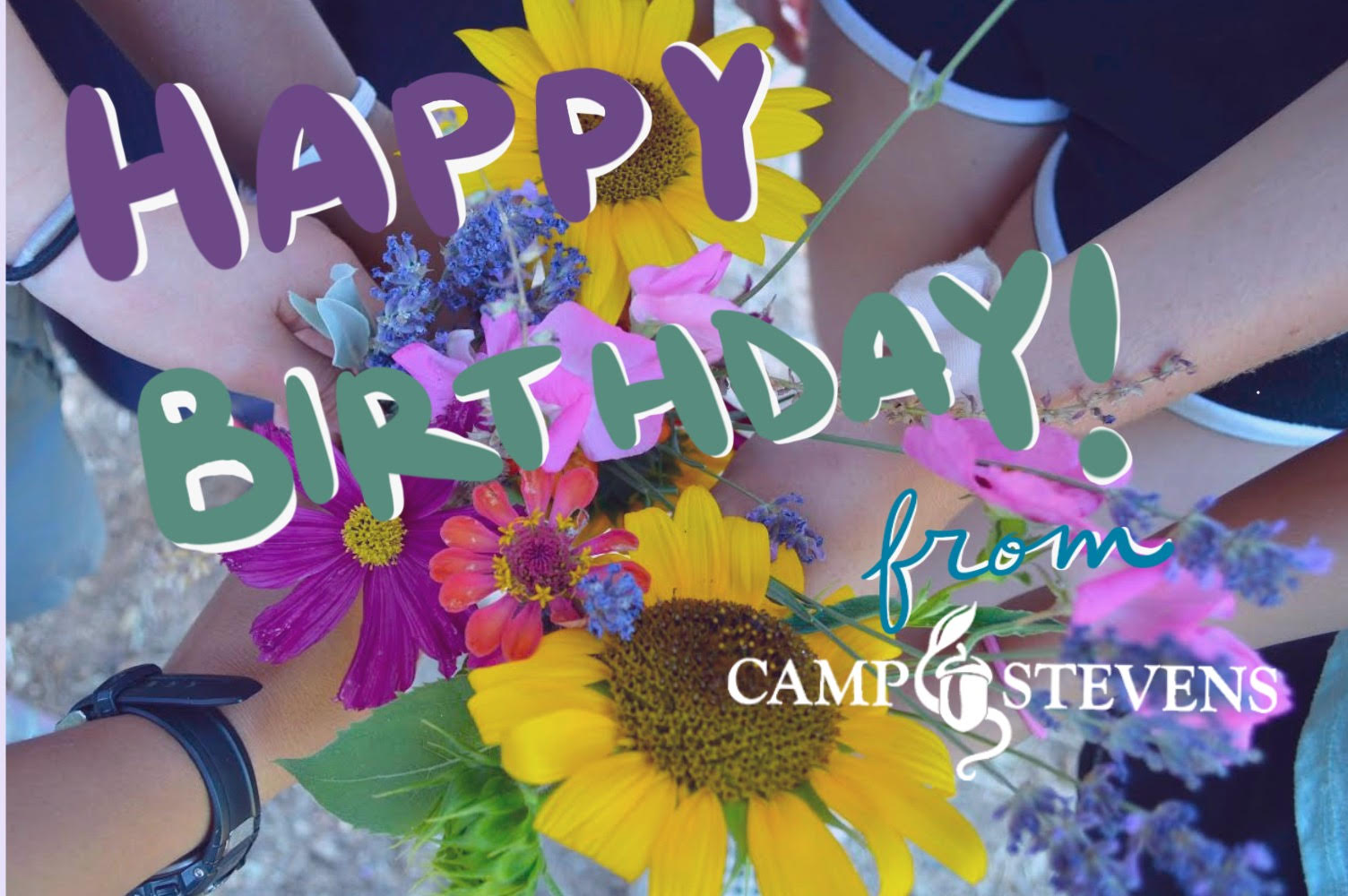 Camp Stevens Birthday Postcard (2019)