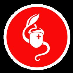 Camp Stevens Emergency Fund Campaign Logo (2020)