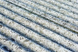 bigstock-Asbestos-Roof-Eternit-22204352.