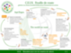 CEIN Roadmap French