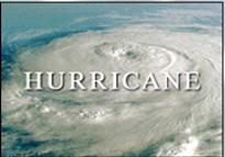hurricane'