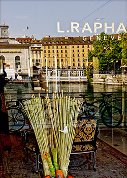 Geneva Rhone Left Bank