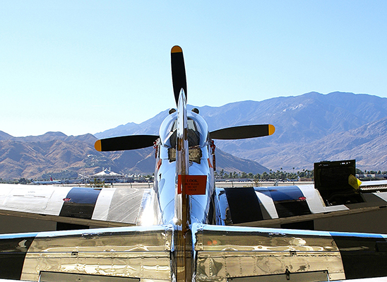 Palm Springs Mustang