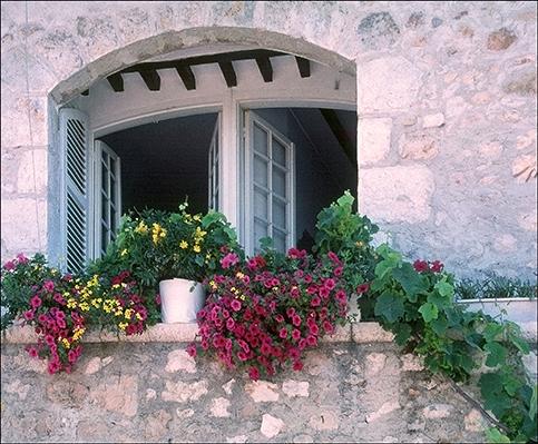St. Paul Window