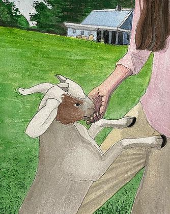 for Webste ____feeding goats.jpg