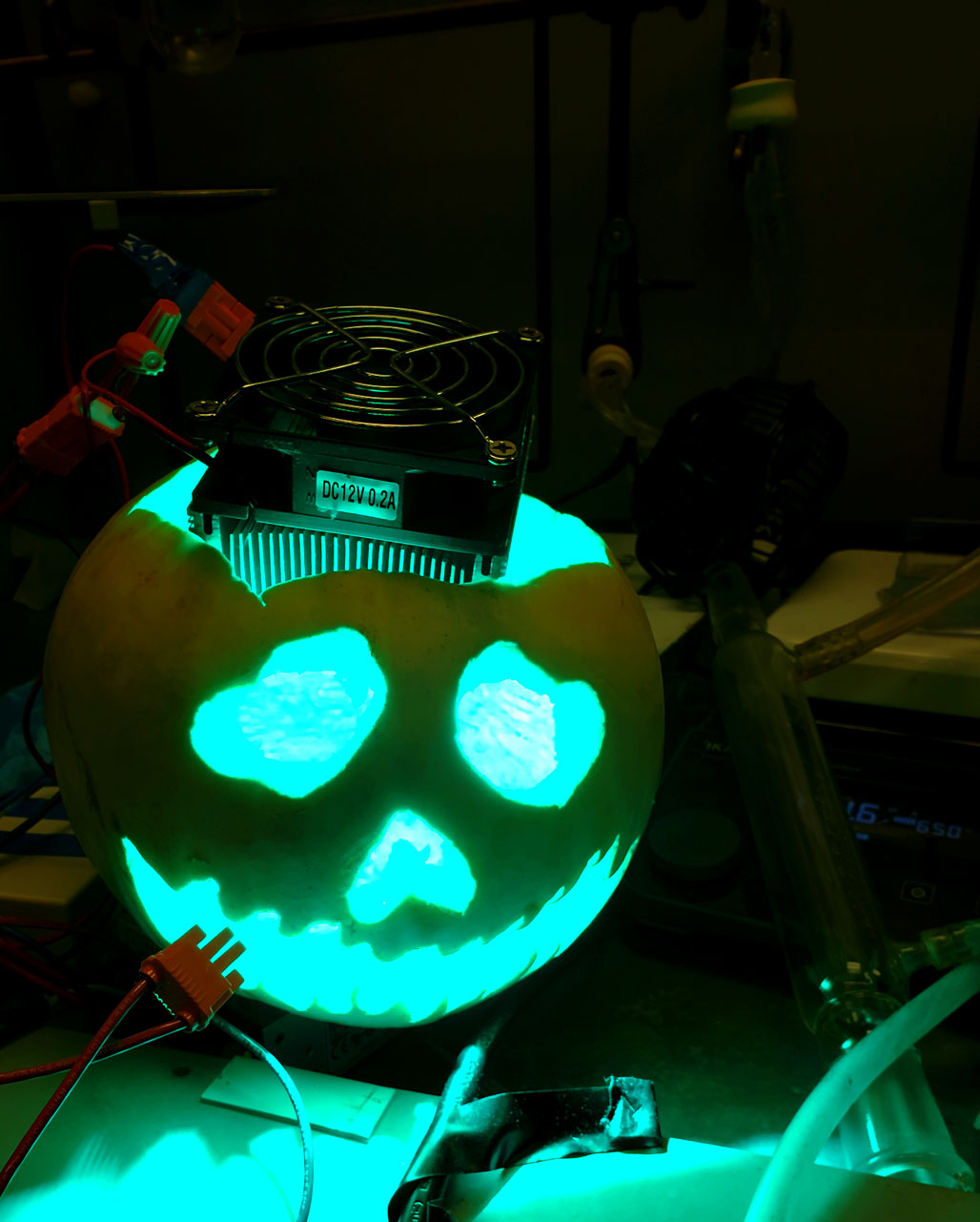 Lab pumpkin 2k18