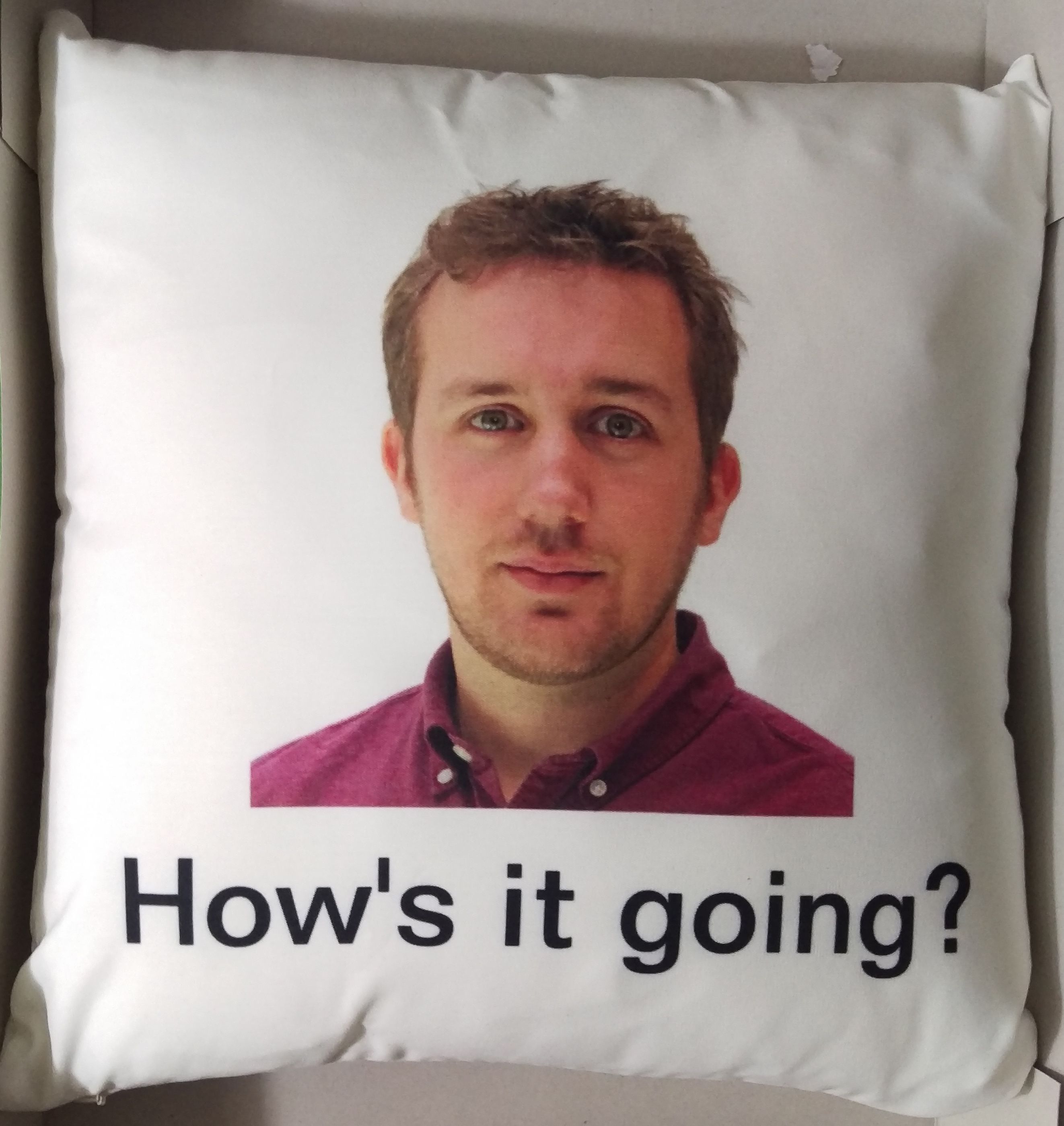 Todd pillow