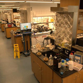 The main lab space