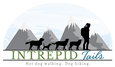 transparent-Intrepid-Tails-Logo-Wide.png