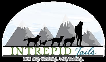 transparent-Intrepid-Tails-Logo-Wide.png