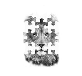 lion jigsaw_edited_edited.jpg