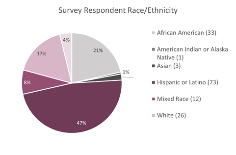 5.-Race-and-Ethnicity.png