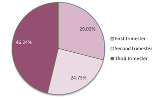 2.-Trimester-of-Survey-Respondents.png