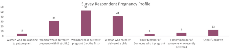 1.-Survey-Respondent-Pregnancy-Profile-1
