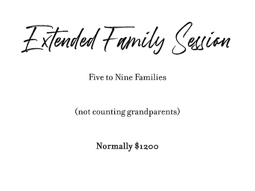 Extended Family Sessions - Five or More Families