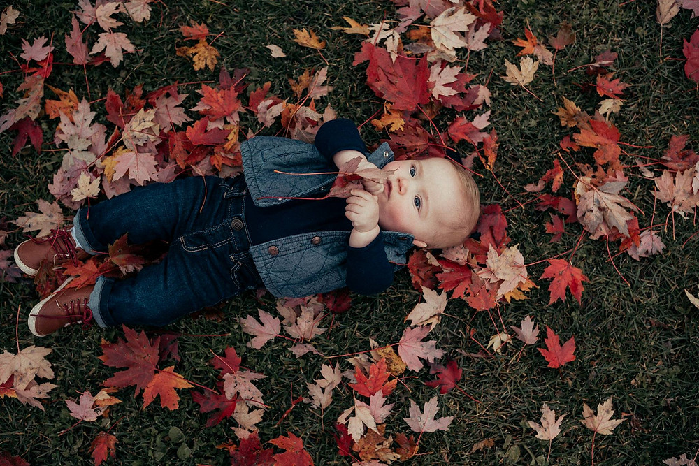 baby laying in leaves