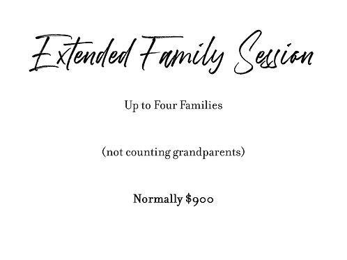Extended Family Session - Up to Four Families