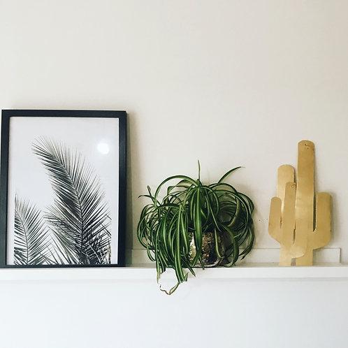 Duo de cactus en laiton Mattea