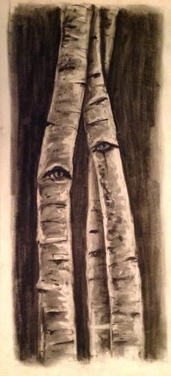 Beyond the Birch 11 (2)