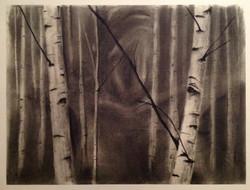 beyond the birch 7