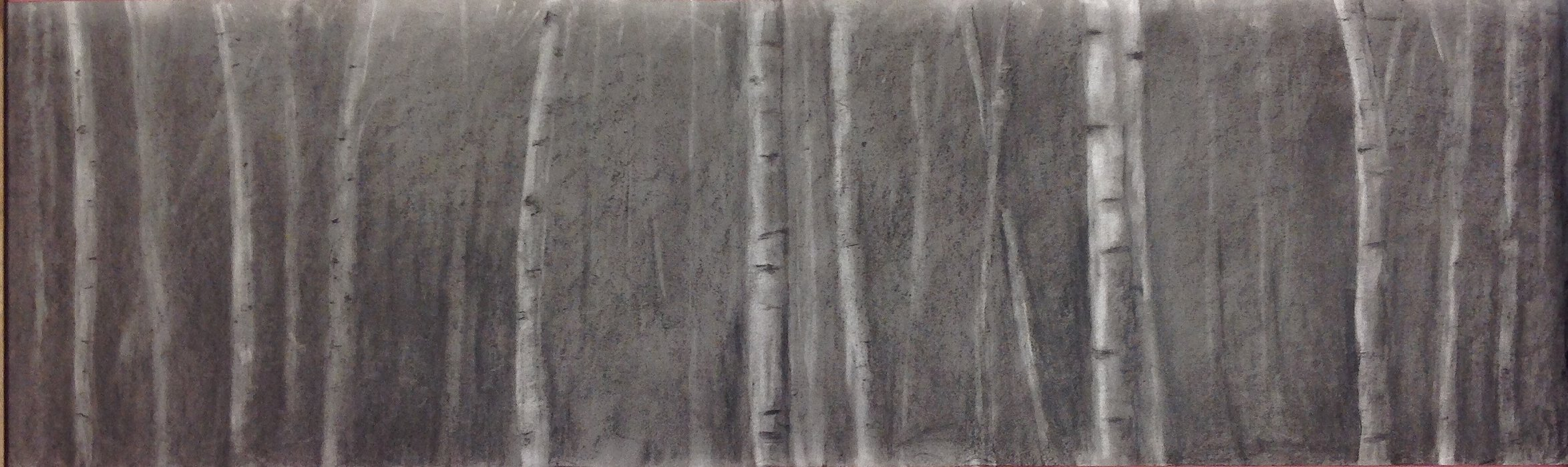 beyond the birch 1