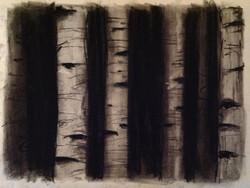 beyond the birch 4