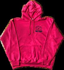 Pink Hoodie_edited.png