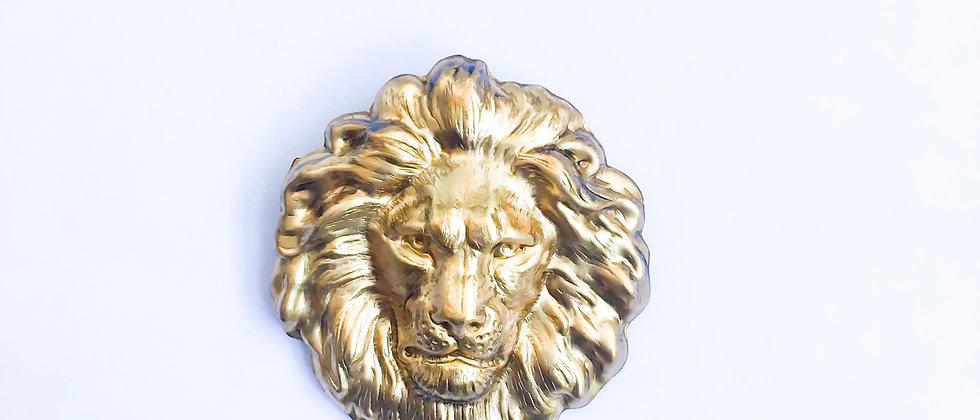Lion Gate Hair Clip