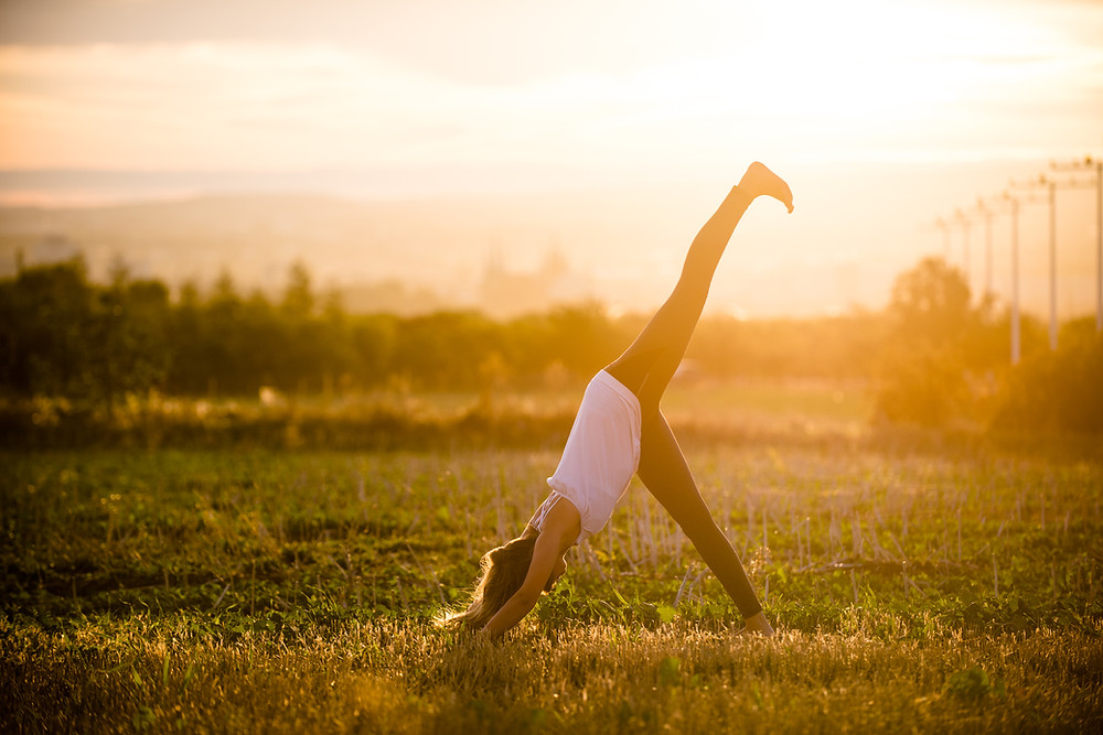 Yoga Asana - Hund