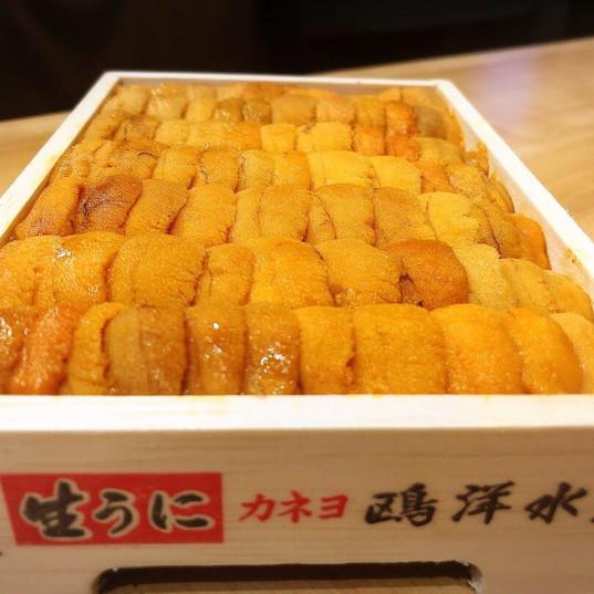 Uni (sea urchin) from Japan!