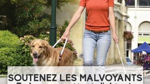 Soutenez les malvoyants en leur permettant d'obtenir des chiens guides