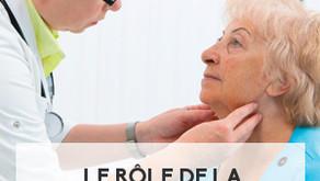 Le rôle de la glande thyroïde