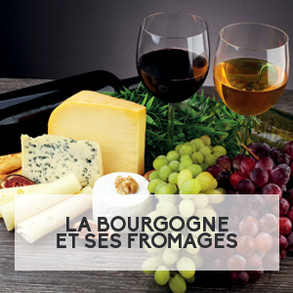 La Bourgogne et ses fromages