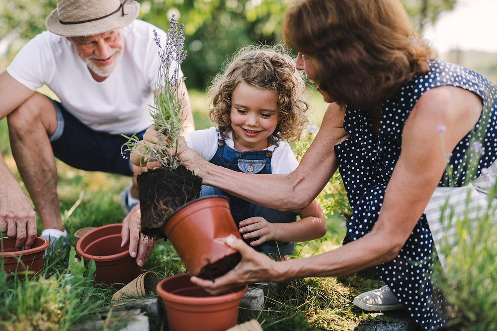 Jardinage avec ses petits-enfants