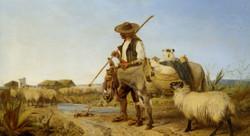 A Spanish Shepherd